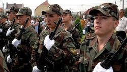 молдавская армия
