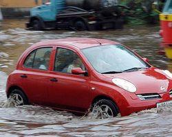 Потоп и дожди бьют по виноделию в Европе