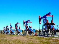 В 2012 году Башнефтью было добыто 15,437 млн. тонн нефти
