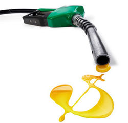 Американцы против роста цен на нефть