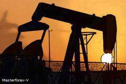 Бензин: стоит ли опасаться значительного роста цен в России?