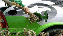 Биотопливо вредно для экологии и здоровья людей – ученые