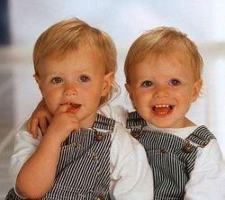 ТОП видео: близнецы дерутся еще до рождения. Новые факты о близнецах