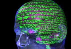 Ученые переписали память мышей, внедрив им фальшивые воспоминания