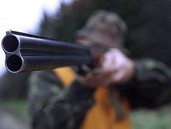 Погоня за браконьерами