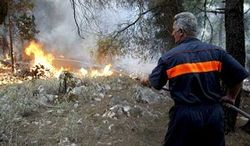 пожары в Братске