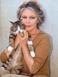 Бриджит Бардо обещает денежное вознаграждение нашедшему ее кошку