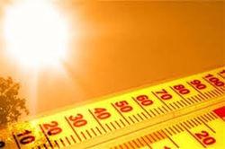 2012 год вошел в ТОП-10 самых жарких за последние полтора столетия
