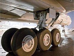 В шасси самолета рейса Италия - Москва нашли мертвеца