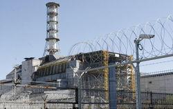Эксперты назвали пригодными материалы для строительства ЧАЭС