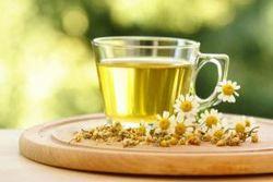 Чай из ромашки хорош для профилактики онкозаболеваний – врачи