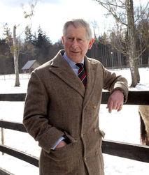 FAQ принца Чарльза: наследник развенчивает мифы о себе и супруге