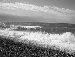 Экологи заявили о смерти Черного моря