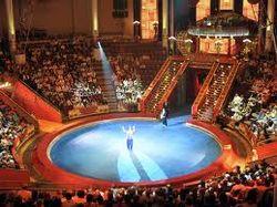 СМИ: Цирк Никулина готов уехать из России по экономическим причинам
