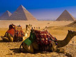 Россия готовится к эвакуации своих туристов из Египта