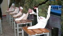 Переселившиеся соотечественники будут служить в российской армии – ГД