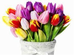 12 апреля – день рождения Н. Пржевальского, М. Кабалье, Л. Дербенева и Ю. Куклачева