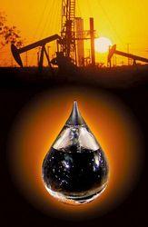 За февраль добыча нефти в Индии сократилась на 4 процента