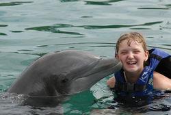 """Туристам: в Ялте на базе """"Акватория"""" открыт центр дельфинотерапии"""