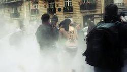 Гражданское общество: демонстрацию против однополых браков в Париже разгоняли слезоточивым газом