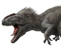 В Китае найдены останки пернатого Тираннозавра