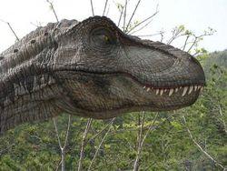 Новые исследования: историческая родина динозавров – Африка