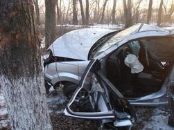 В Латвии авто на скорости в 170 км/ч снесло 9 деревьев