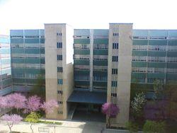 В медакадемии Ташкента ввели обязательные лекции на английском языке