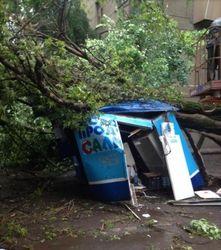 Упавшее в Одессе дерево раздушило ларек и продавщицу – последствия