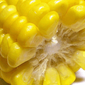 Рынок кукурузы продолжает торги во флете - трейдеры
