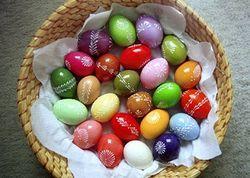 производитель яиц
