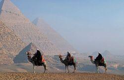 Туристам: в Египте сократили время комендантского часа
