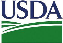 Обзор рынка пшеницы: трейдеры в ожидании отчетов USDA