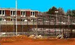 Джохара Царнаева из больничной палаты перевели на тюремные нары
