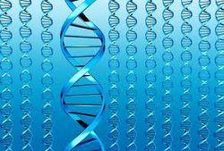 Мания преследования заложена в генах человека с рождения – ученые
