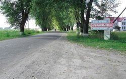 Черкасская область: спасатели устранили разлитое ядовитое вещество