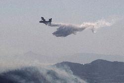 Греция не справляется с лесными пожарами и просит о помощи