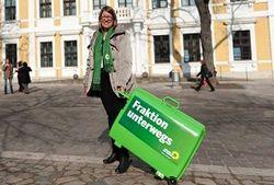 партия зеленых