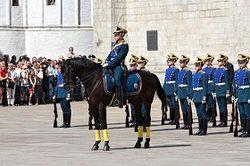 кремлевкие гвардейцы