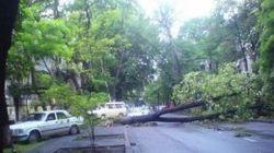 Новые события последствий стихии в Одессе - пострадали 4 людей