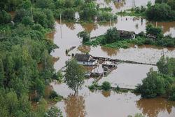 Ущерб аграрного сектора от наводнения в Приамурье оценили в 8,5 млрд. рублей