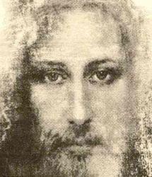 В США увидели образ Иисуса в птичьем помете