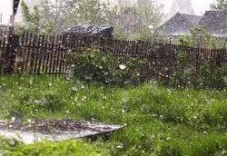 Гроза и сильный ветер в Беларуси