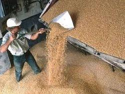 Сбор зерновых