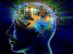 Интеллект можно повышать не только чтением, но и физкультурой