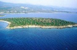 В Греции выставлен на торги остров: миллион евро за гектар