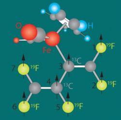 Прорыв в науке: ученые разработали квантовый ЭВМ