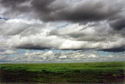 В Украине поменялся климат: осадки усилились, температура выросла, – ученые