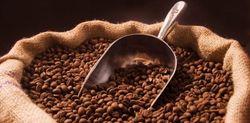 Эксперты о мировых тенденциях и слухах подорожания кофе в Украине