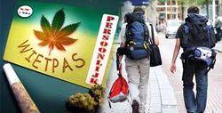 В Голландии кофейням компенсируют ущерб от запрета на продажу марихуаны